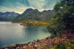 Fjord in evening in rainy day Royalty Free Stock Photography