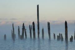 Fjord, koud water Royalty-vrije Stock Foto's