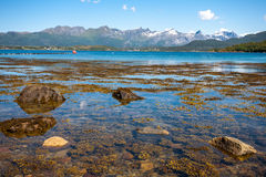 Fjord landscape. Stock Photography