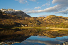 Fjord Leven Arkivfoto