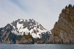 Fjord litoral Seward, Alaska Imagem de Stock