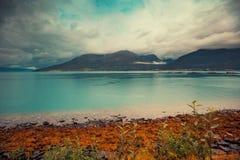 Fjord med blått vatten i stormigt väder Royaltyfria Foton