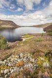 Fjord Muick i Aberdeenshire, Skottland Royaltyfria Bilder
