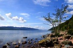 Fjord Ness Scotland Arkivfoto