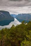 Fjord in Noorwegen met pijnboombomen in de voorgrond - beelden van Royalty-vrije Stock Foto