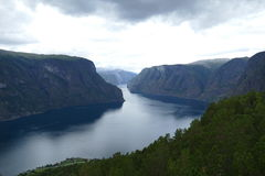 fjord norway Royaltyfri Fotografi