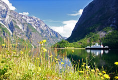 fjord norway Royaltyfri Foto