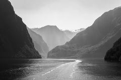 Fjord in Norway. With a little boat Royalty Free Stock Images
