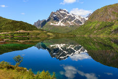 A fjord in Norway. Mountains with snow ands a reflection in a lake on the island Hinnoya at Norway Royalty Free Stock Images