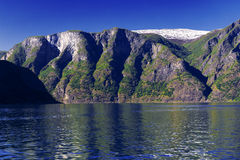 Fjord at Norway. View on fjord at summer day Royalty Free Stock Photos