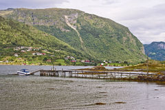 Fjord and pier Royalty Free Stock Photos