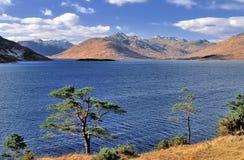 Fjord Quoich, Knoydart, Skottland royaltyfria foton