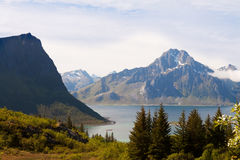 Fjord scénique sur des îles de Lofoten avec typique Images libres de droits