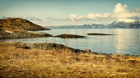 Fjord shore. Spring view on fjord shore Stock Image