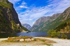 Fjord Sognefjord - Norge Royaltyfri Bild