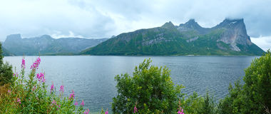 Fjord summer cloudy panorama (Norway) Stock Photography