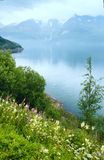 Fjord summer cloudy view (Norway) Royalty Free Stock Images