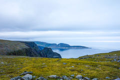 Fjord view in Norway stock images