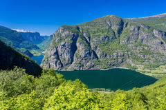 Fjord view. On summer day Royalty Free Stock Images