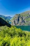 Fjord view. On summer day Stock Images