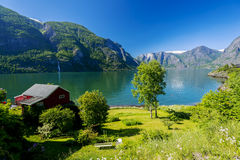 Fjord view. On summer day Royalty Free Stock Photo