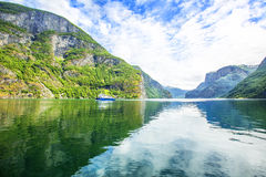 Fjorden in de Skandinavische aard van Noorwegen en Neroyfjord Royalty-vrije Stock Fotografie