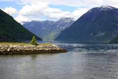 fjordgeiranger Arkivfoto