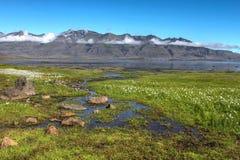 Fjordlandschaft, Island stockfotos