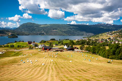 Fjordlandskap Fotografering för Bildbyråer