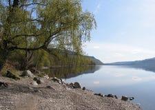 fjordrannoch Royaltyfri Fotografi