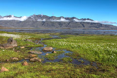 Fjords landscape, Iceland Stock Photos