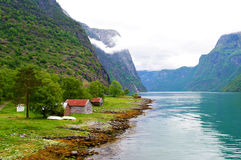 fjords norway Royaltyfri Fotografi