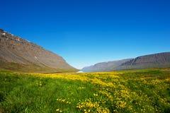 Fjords occidentaux image stock