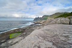 Fjordufer in Norwegen Stockbild