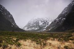 Fjorland国家公园,新西兰 免版税库存照片