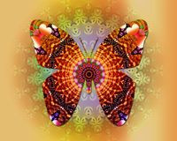 FjärilsMandala Arkivfoton