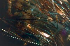 Flámulas de oro con el brillo chispeante - fondo de los días de fiesta de la Navidad Imágenes de archivo libres de regalías