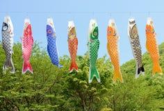Flâmula carpa-dada forma japonesa Foto de Stock Royalty Free