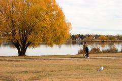 Flânerie par l'automne II Photos stock