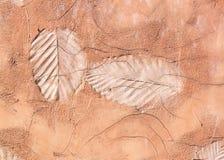 Fläckar av bladet Arkivfoto