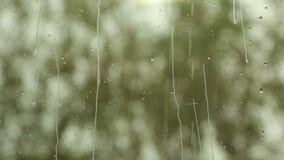 Fläckarna av regn på exponeringsglaset stock video