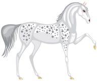 fläckig grå häst royaltyfri illustrationer