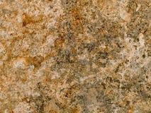 Fläckig makrotextur - sten - Arkivbilder