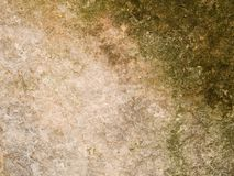 Fläckig makrotextur - sten - fotografering för bildbyråer