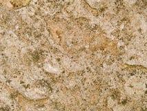 Fläckig makrotextur - sten - Arkivfoton