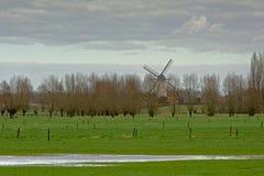 Flämische Ackerlandlandschaft mit traditioneller Windmühle Stockfoto