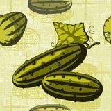 flätad gurka för bakgrund Arkivfoton