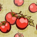flätad tomat för bakgrund Royaltyfri Bild