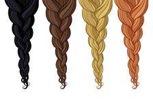 Flätad tråd av hår royaltyfri illustrationer