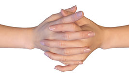 Flätade samman fingrar av en kvinna Royaltyfri Bild